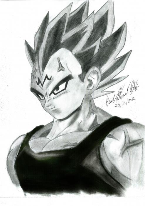 Dragon Ball by himurapt